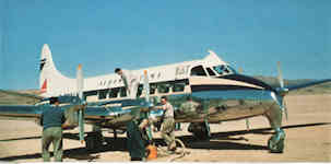 Héron en Mauritanie